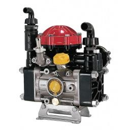 AR30 - Diaphragm Pump w/ Gearbox & Regulator AR30-GR3/4-GCI