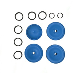 Repair Diaphragm Kit AR80BP/LFP