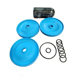 Repair AR813 Diaphragm Kit